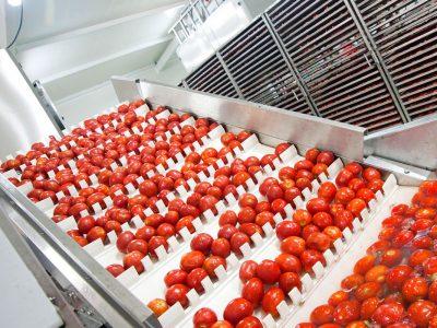 Secom para la industria agroalimentaria